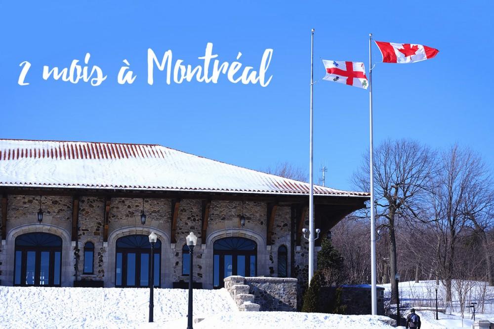 PVT Canada | bilan de nos deux premiers mois à Montréal