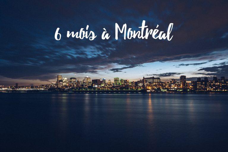 PVT Canada | bilan des six mois à Montréal