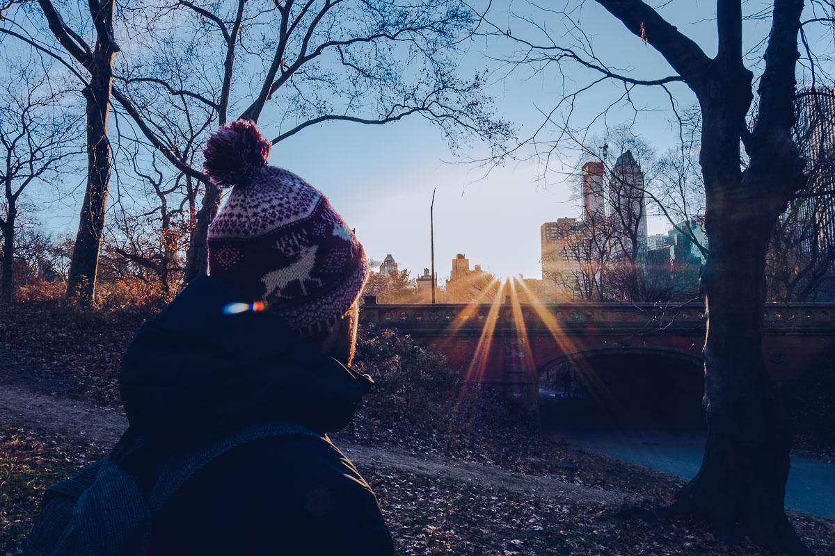 refuse to hibernate new york mickael central park
