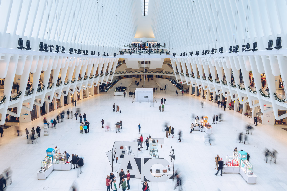 refuse to hibernate new york oculus
