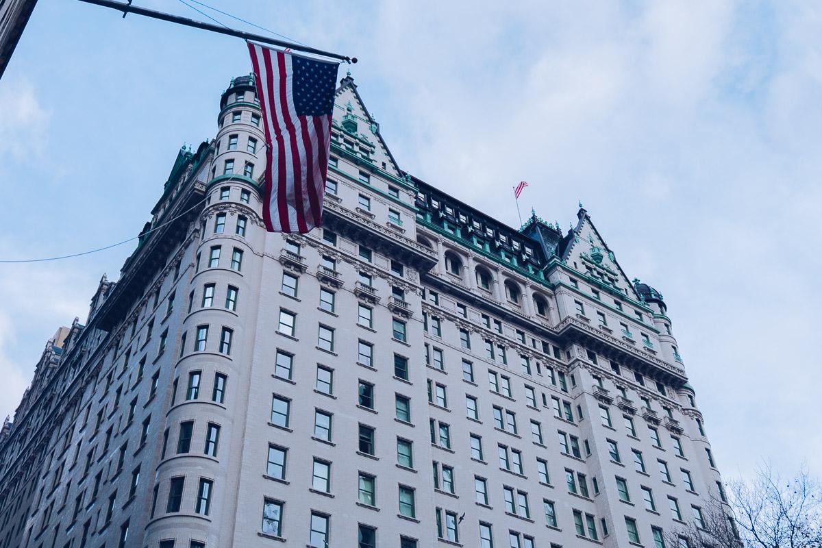 refuse to hibernate new york plaza hotel