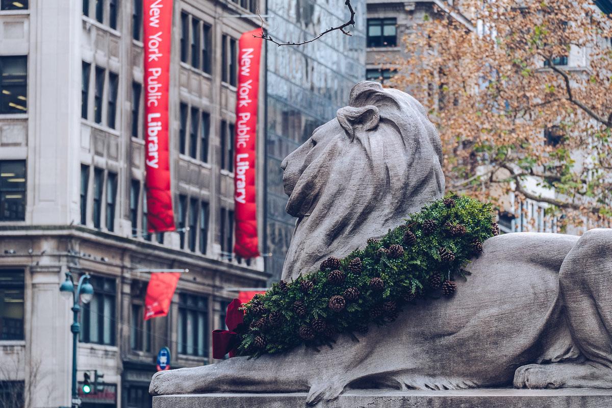 refuse to hibernate new york lion public library