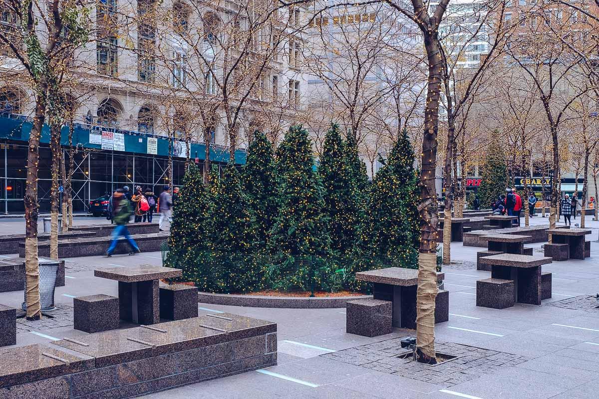 refuse to hibernate new york sapins noel
