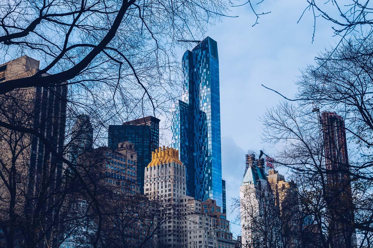 refuse to hibernate new york vue central park