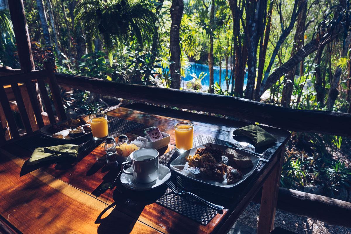 Refuse to hibernate yucatan hotel okaan petit dejeuner