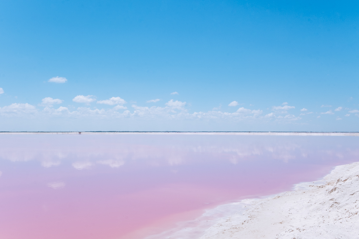 Refuse to hibernate yucatan las coloradas lac rose