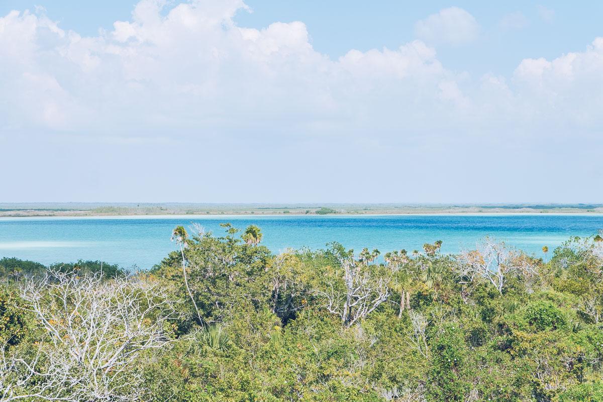 Refuse to hibernate yucatan tulum reserve sian kaan