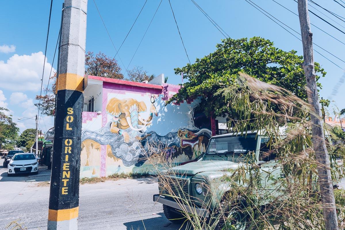 Refuse to hibernate tulum pueblo street art
