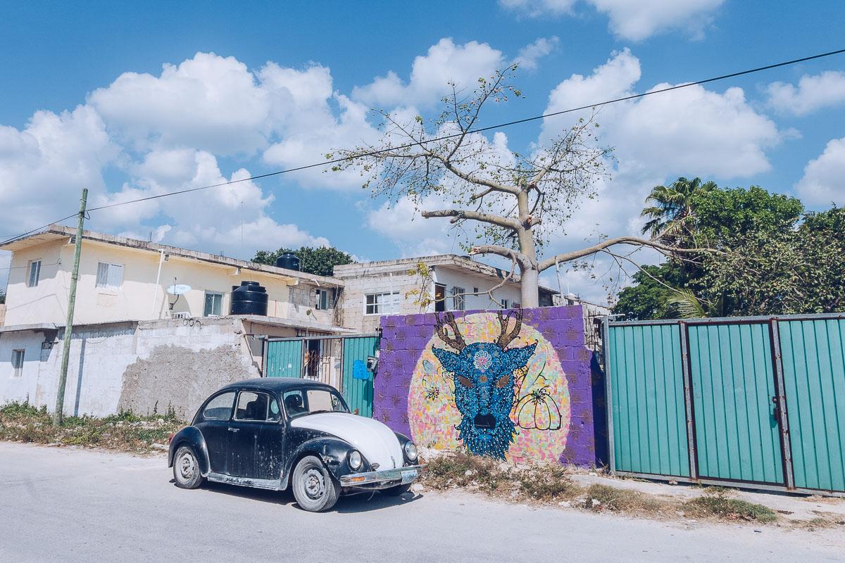 Refuse to hibernate tulum pueblo street art coccinelle