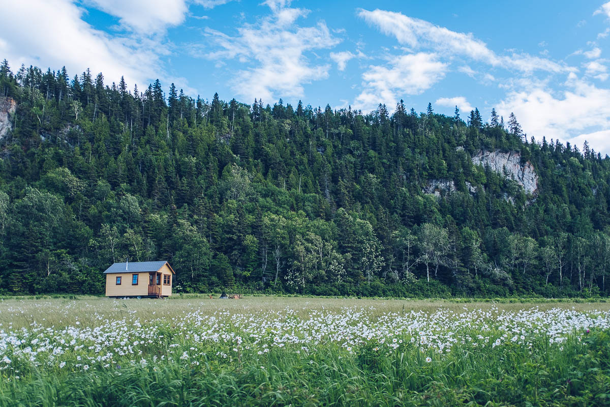 Refuse to hibernate domaine floravie tiny house jaune avec montagne
