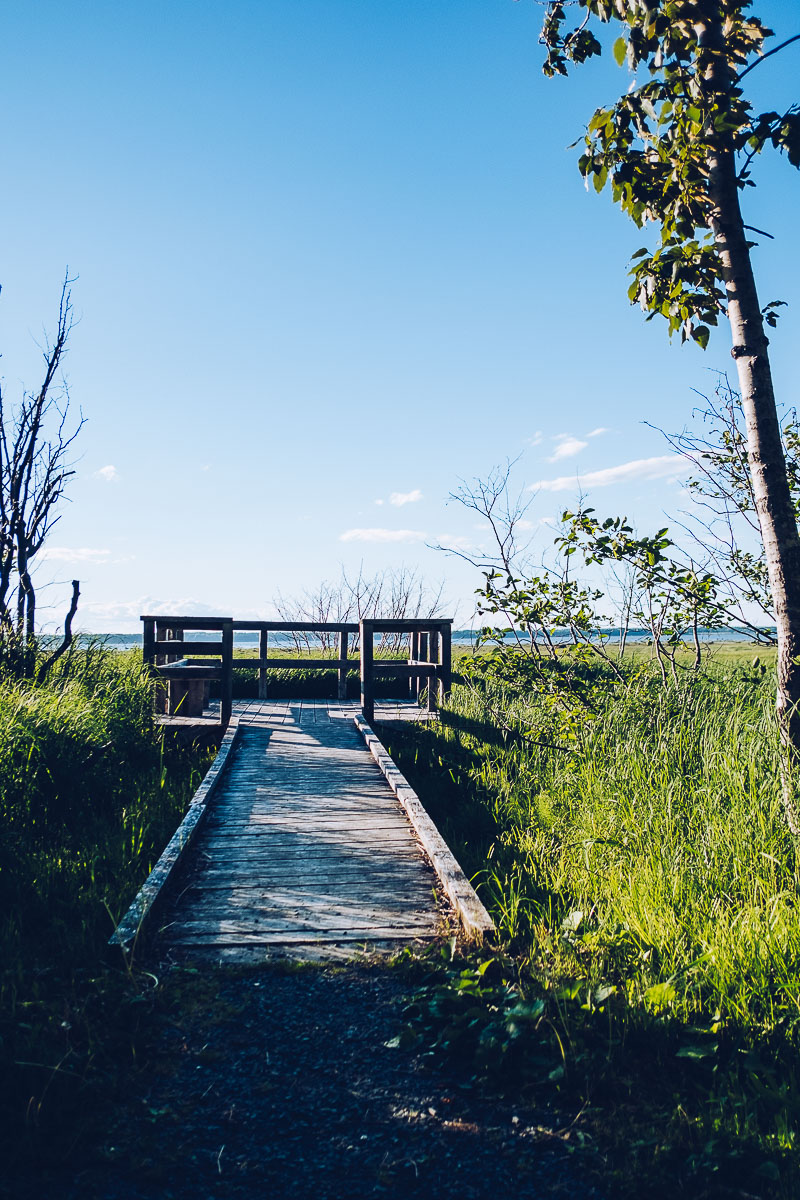 Refuse to hibernate bas saint laurent rimouski belvedere sentier du littoral