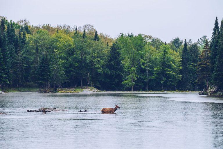 Outaouais, weekend atypique en pleine nature