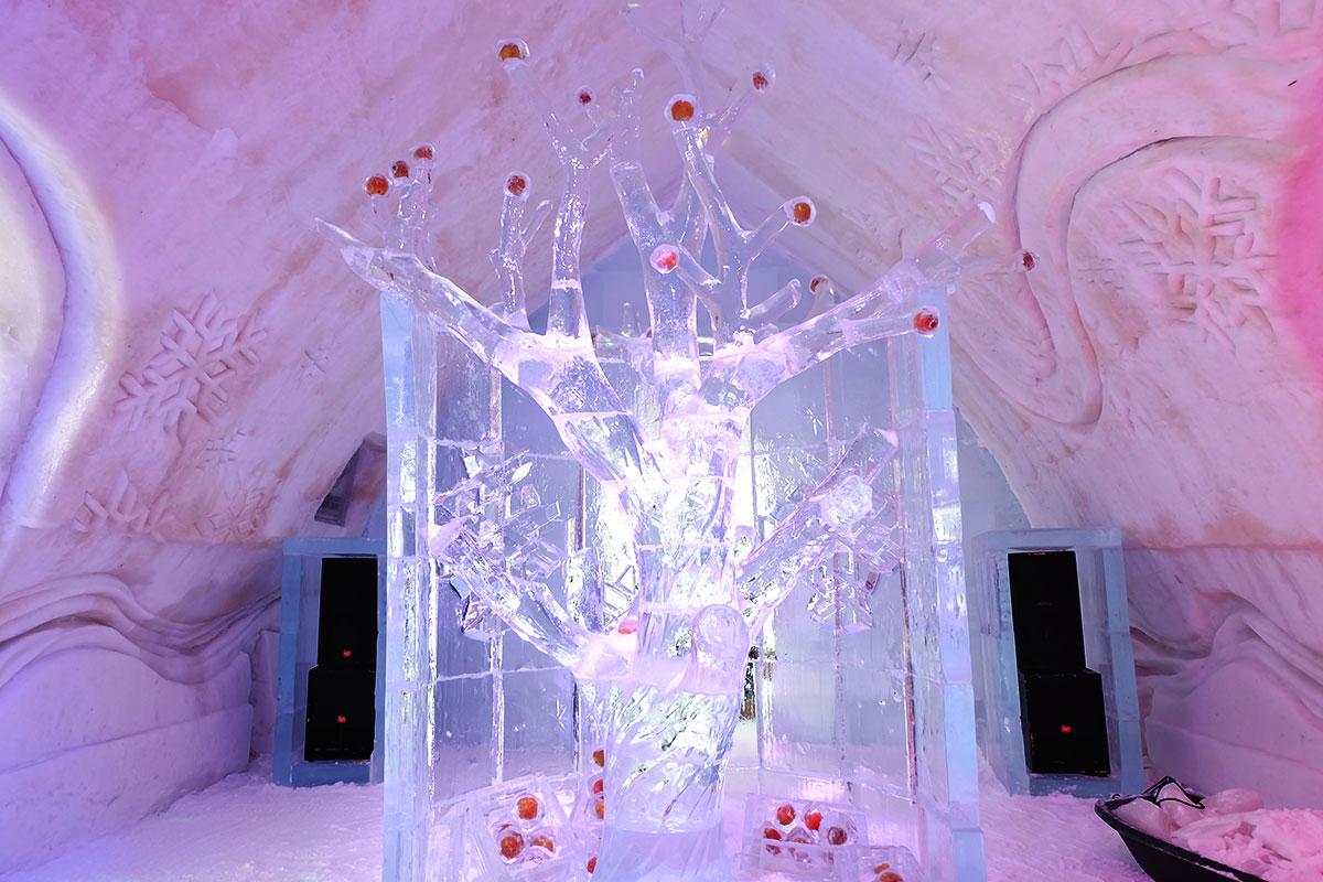 Refuse to hibernate Québec arbre en glace à l'Hôtel de Glace