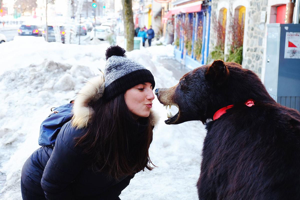 Refuse to hibernate Québec Audrey et un ours