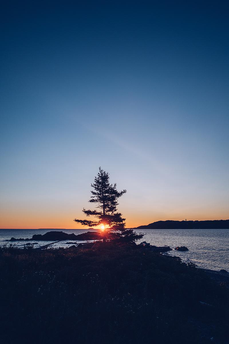 Refuse to hibernate domaine floravie coucher de soleil sapin