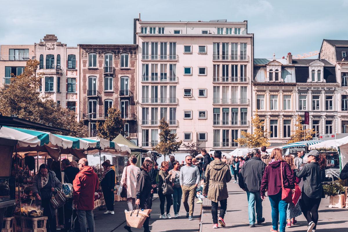 Refuse to hibernate Anvers marche samedi