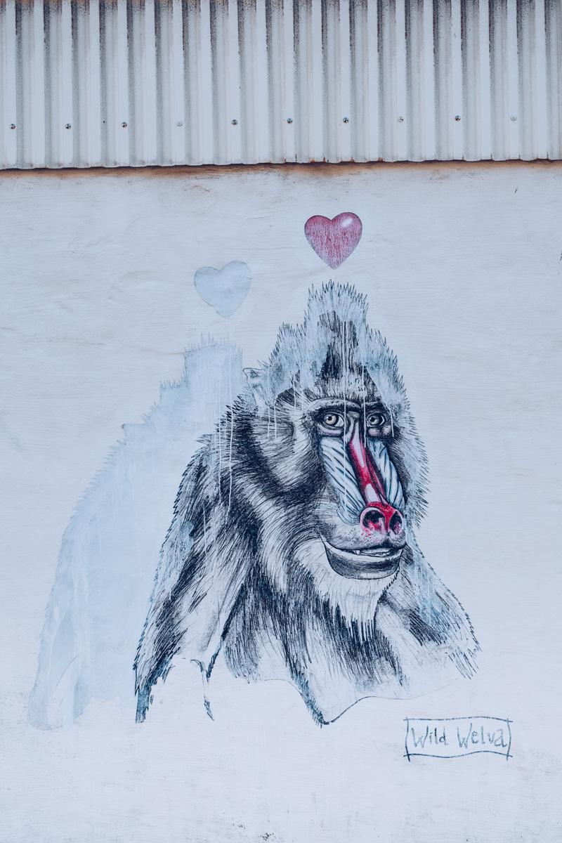 Refuse to hibernate islande street art wild welva