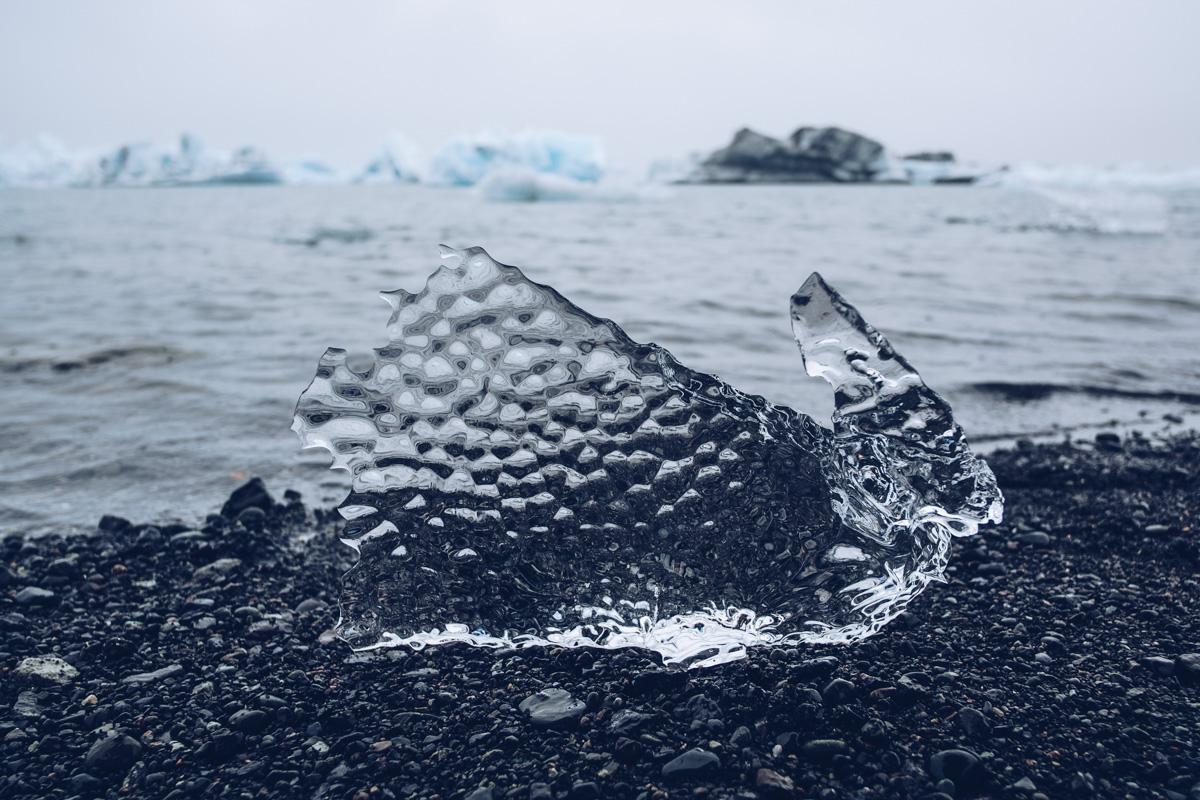 Refuse to hibernate islande jokulsarlon iceberg lapin