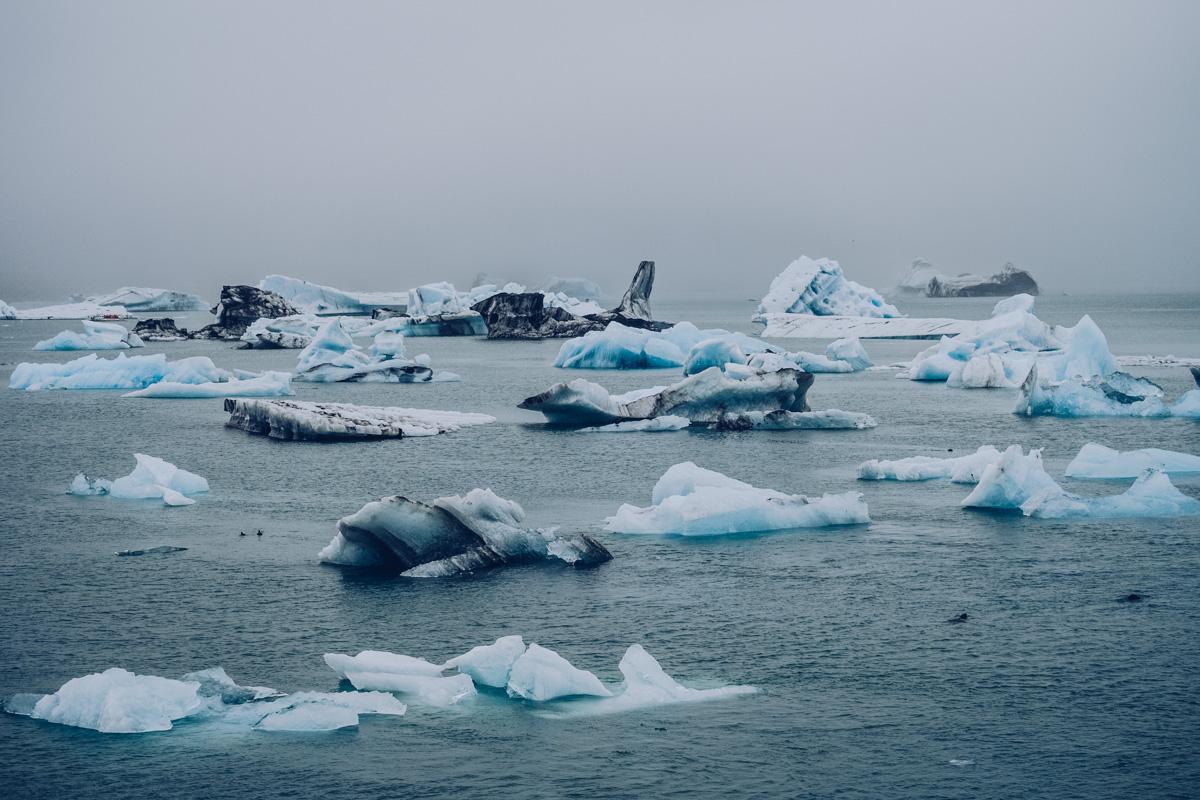 Refuse to hibernate islande jokulsarlon icebergs