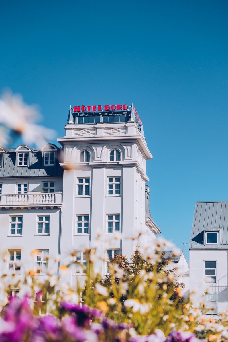 Refuse to hibernate reykjavik hotel borg