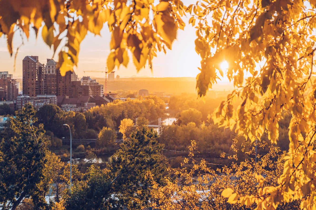 Refuse to hibernate Calgary lumiere automne depuis rotary park