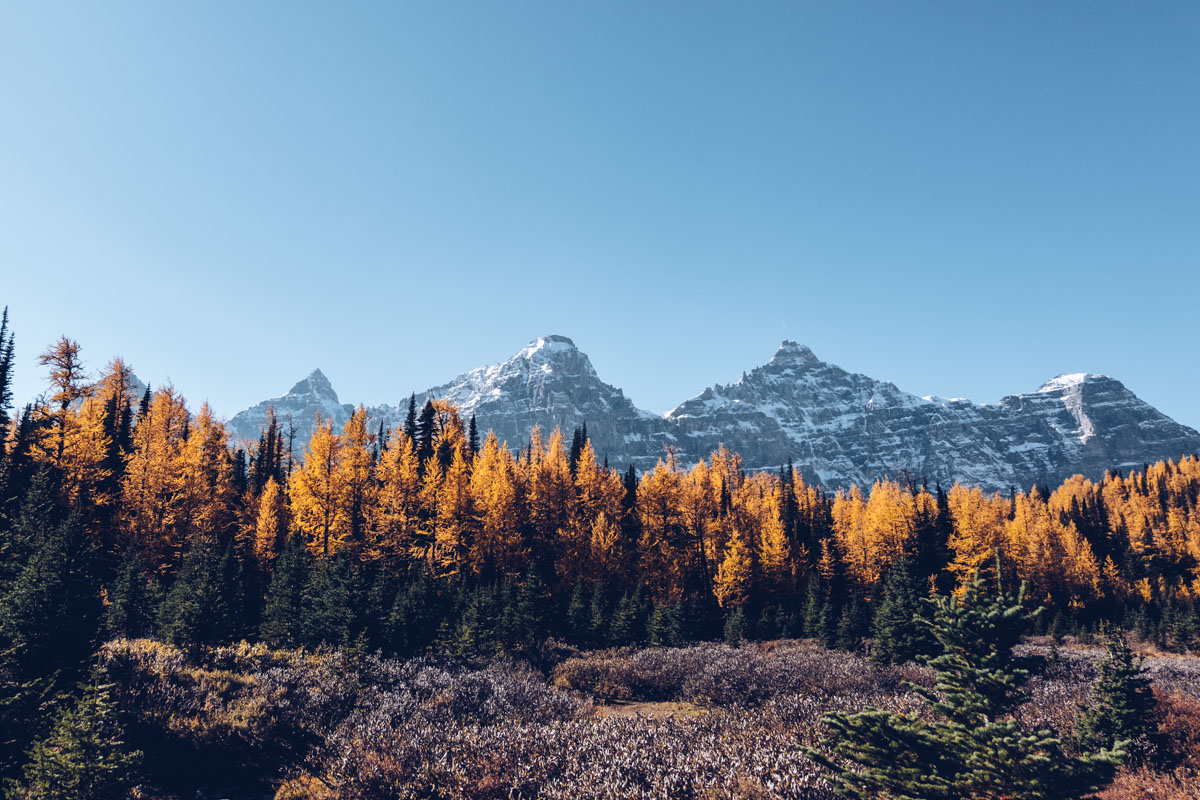Refuse to hibernate Rocheuses moraine vallee des dix pics