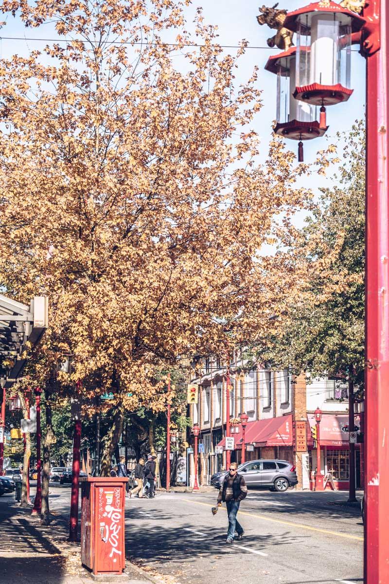 Refuse to hibernate Vancouver chinatown rue