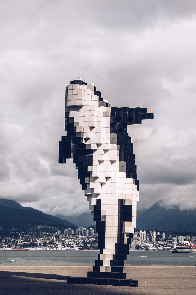 Refuse to hibernate Vancouver place du canada orca