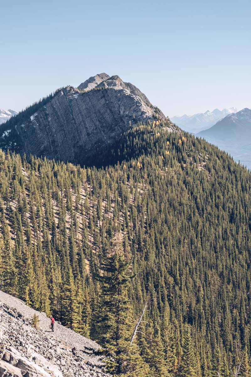 Refuse to hibernate Ouest canadien mont Sulphur chemin