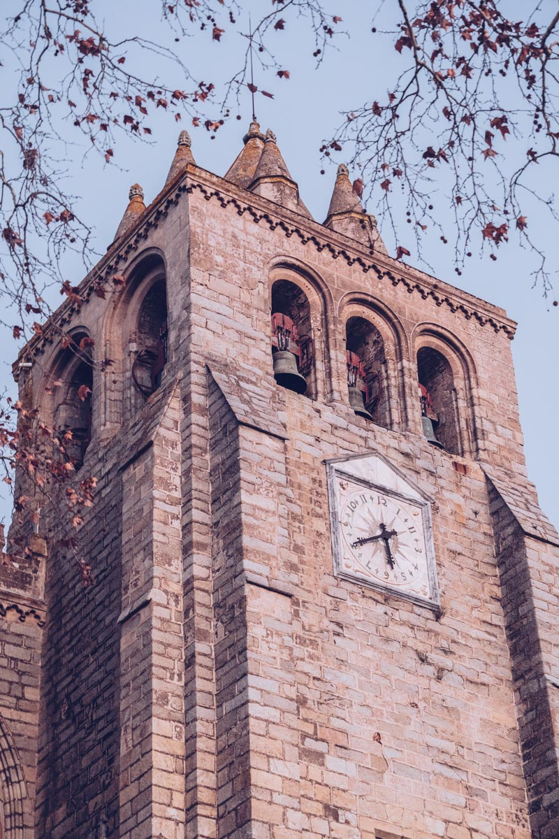 Refuse to hibernate Évora cathédrale Notre Dame de l'Assomption