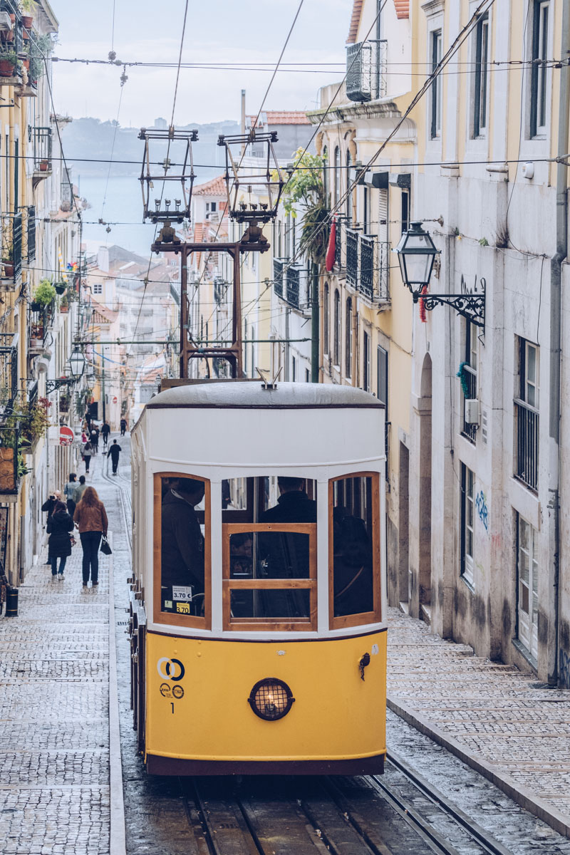 Refuse to hibernate Lisbonne funiculaire da bica