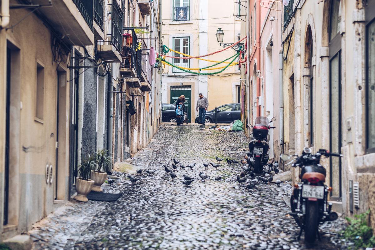 Refuse to hibernate Lisbonne ruelle pavee