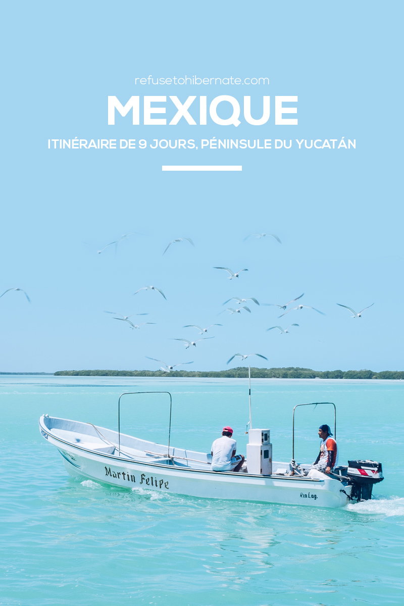 Refuse to hibernate Mexique road trip pinterest