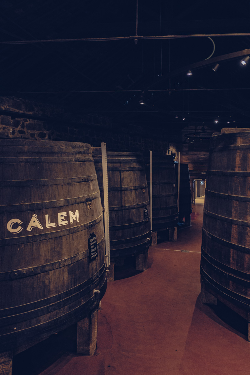 Refuse to hibernate Porto caves Calem musée gros tonneaux