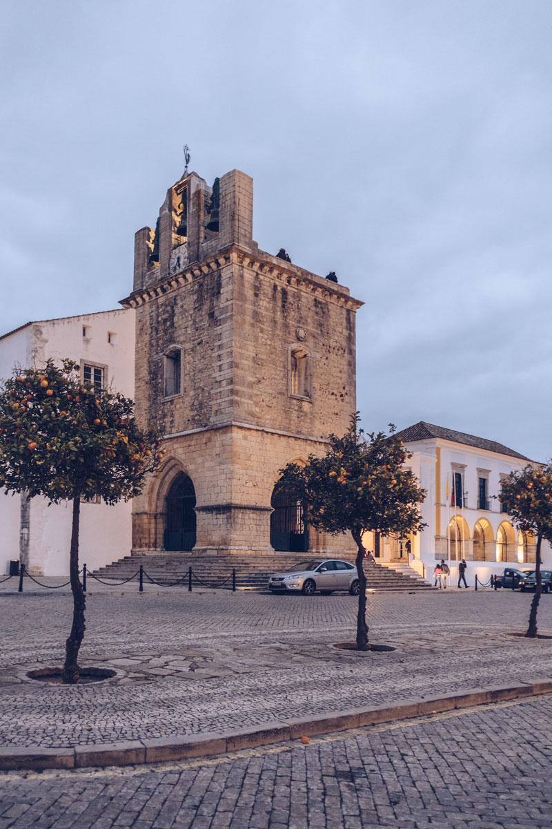 Refuse to hibernate Portugal Faro cathédrale orangers