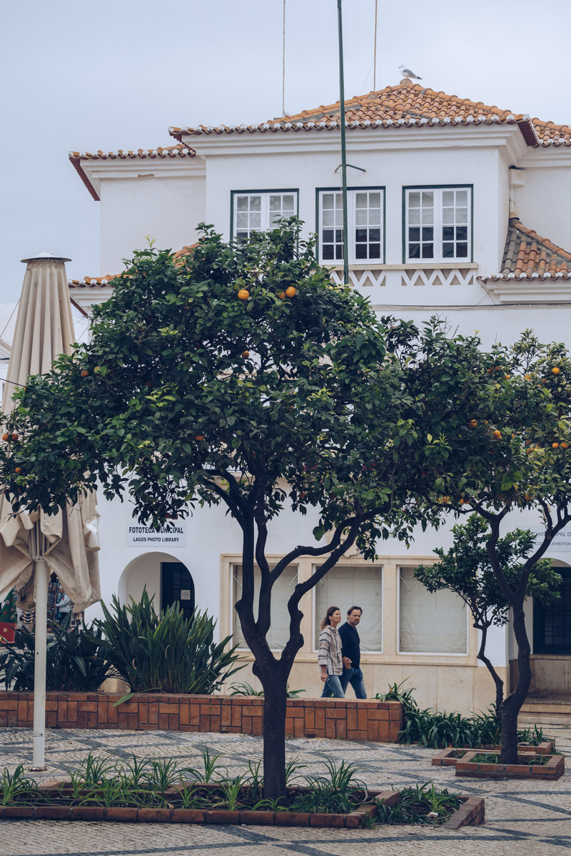 Refuse to hibernate Portugal Lagos oranger