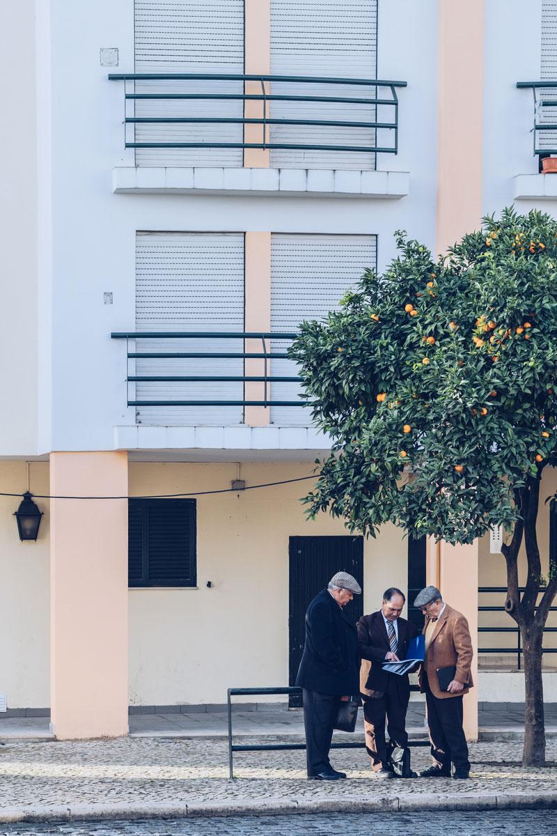 Refuse to hibernate Portugal lisboetes oranger