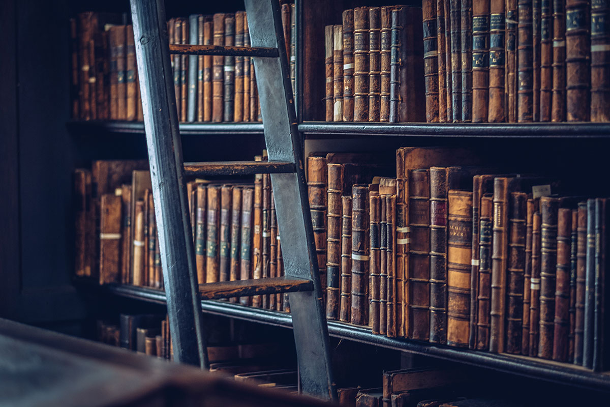 Refuse to hibernate Dublin bibliothèque Trinity College livres