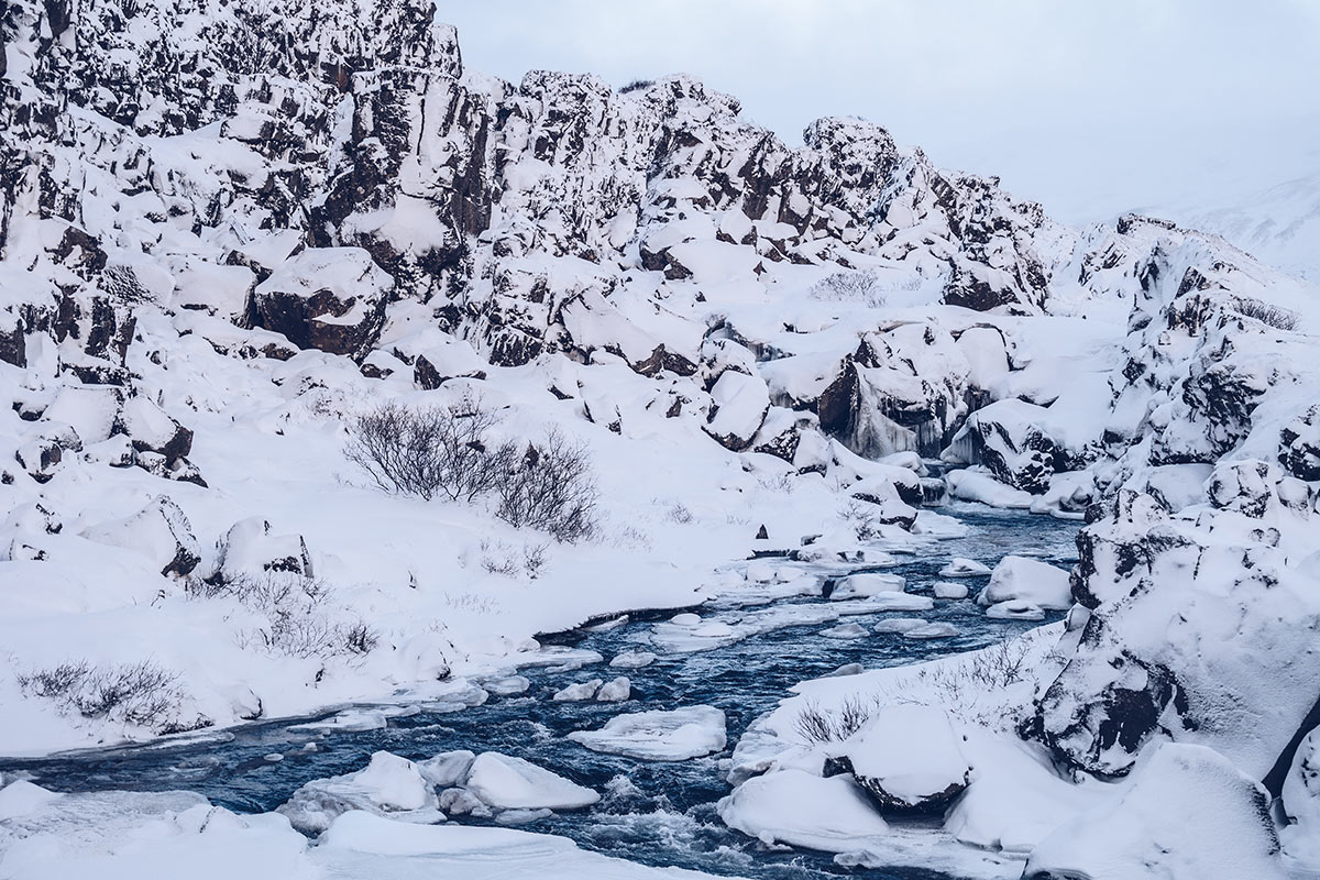 Refuse to hibernate Islande en hiver parc national Thingvellir ruisseau