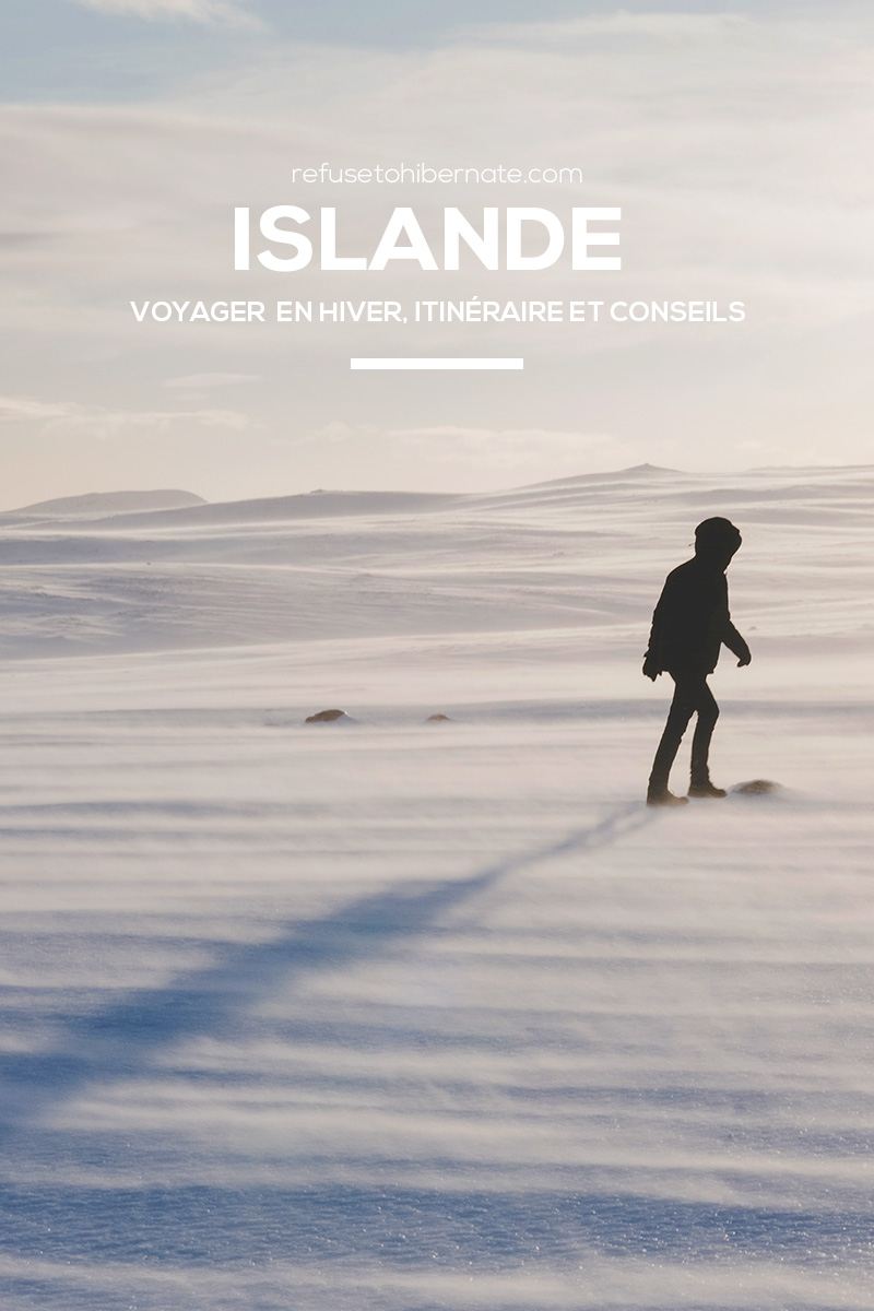 Refuse to hibernate Islande hiver Pinterest