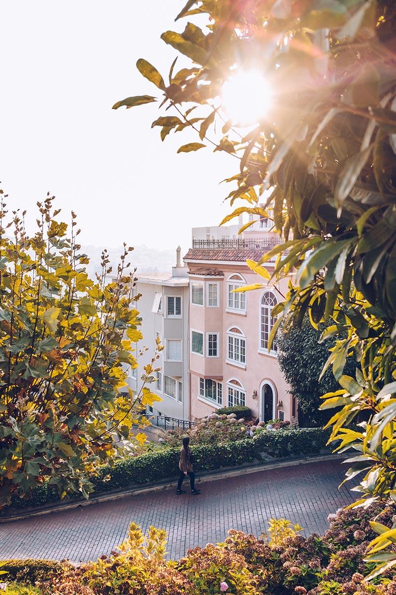 Refuse to hibernate San Francisco Lombard street Audrey