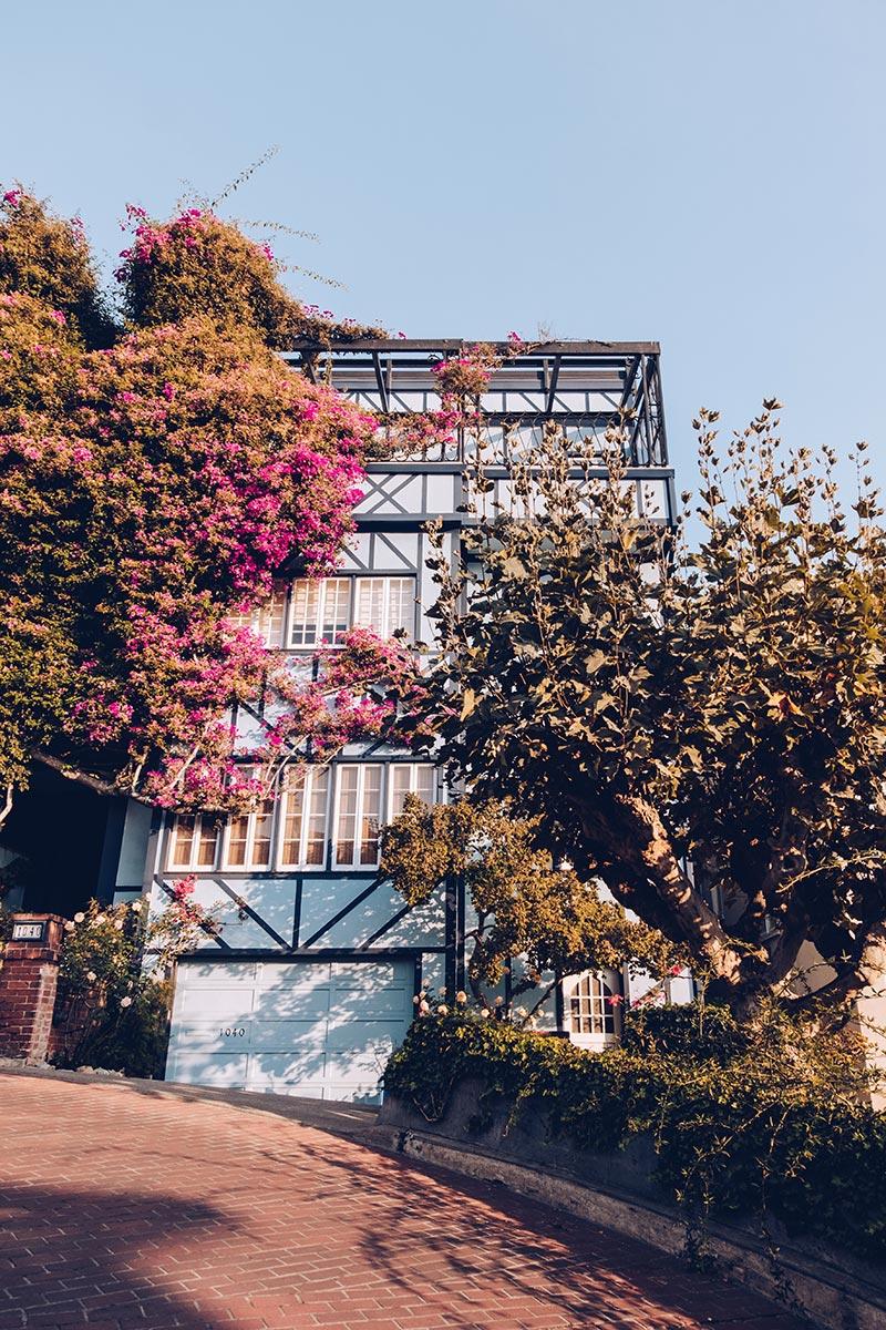 Refuse to hibernate San Francisco Lombard street maison