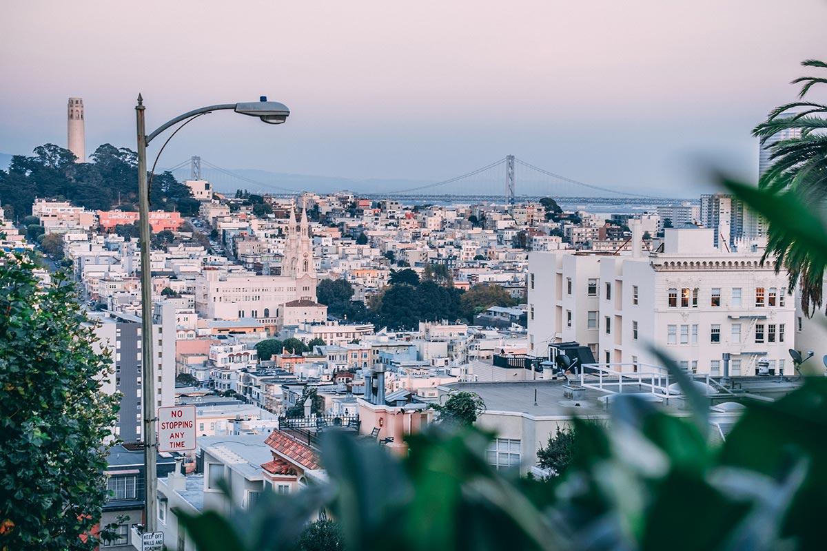 Refuse to hibernate San Francisco Lombard street panorama