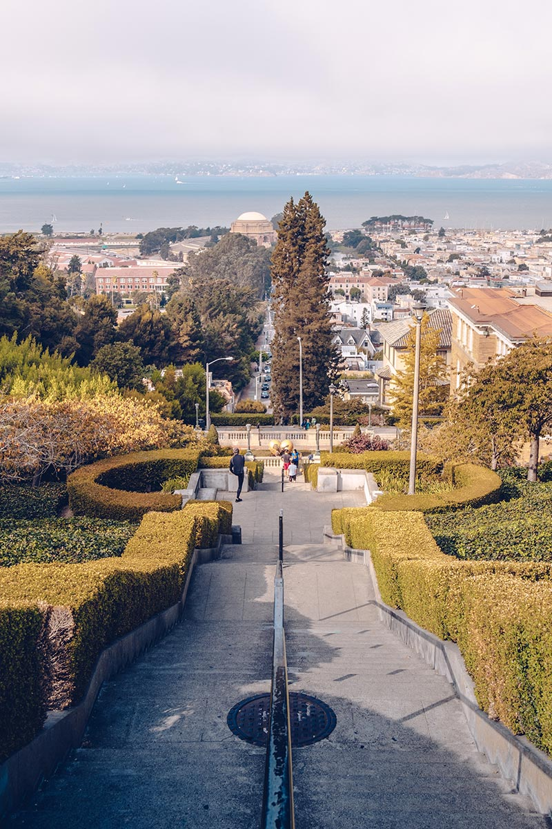 Refuse to hibernate San Francisco Lyon Street Steps
