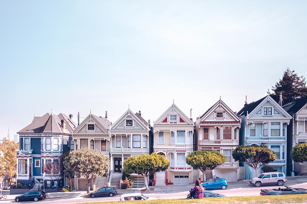 Refuse to hibernate San Francisco Painted Ladies Audrey