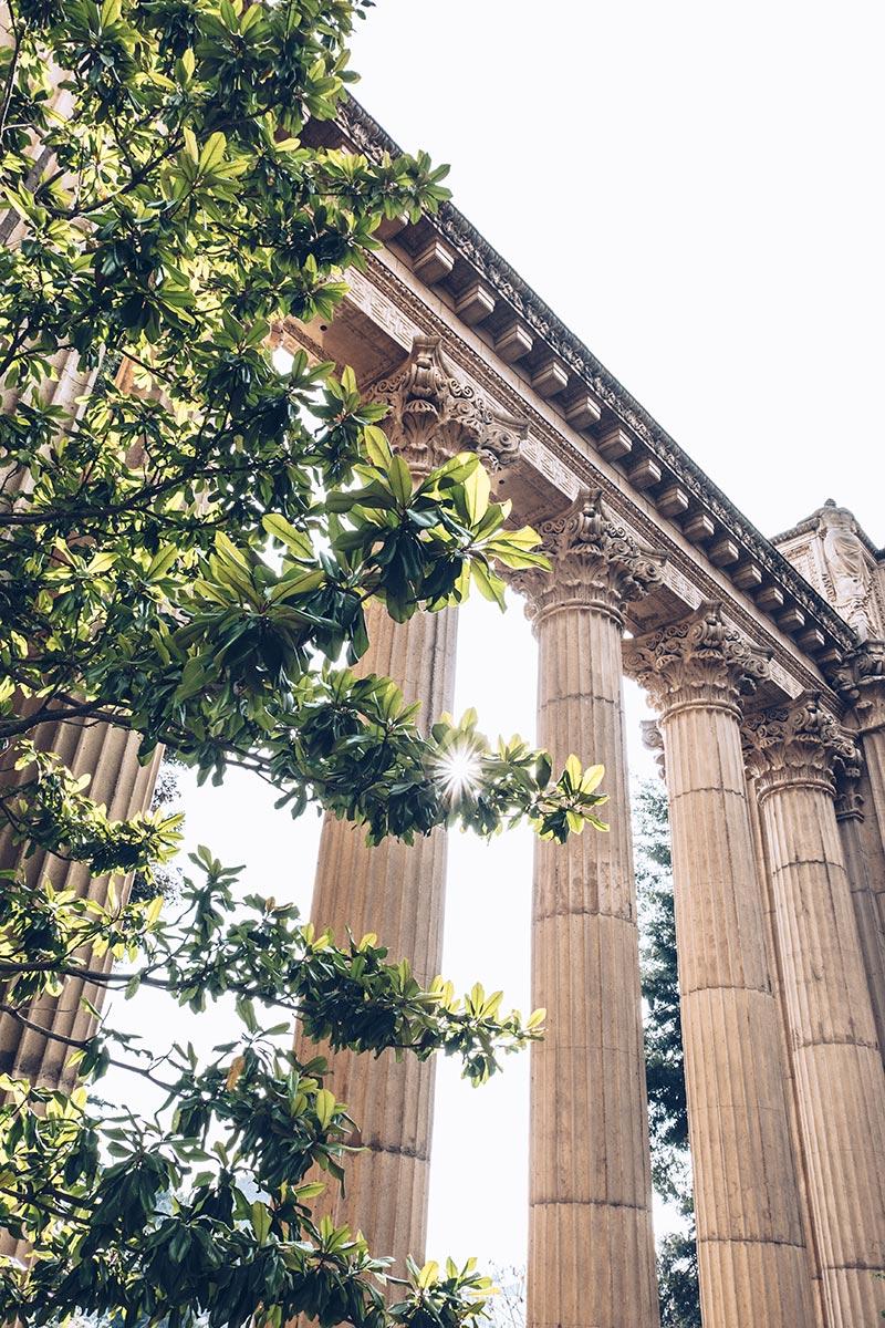 Refuse to hibernate San Francisco Palace of Fine Arts colonnes