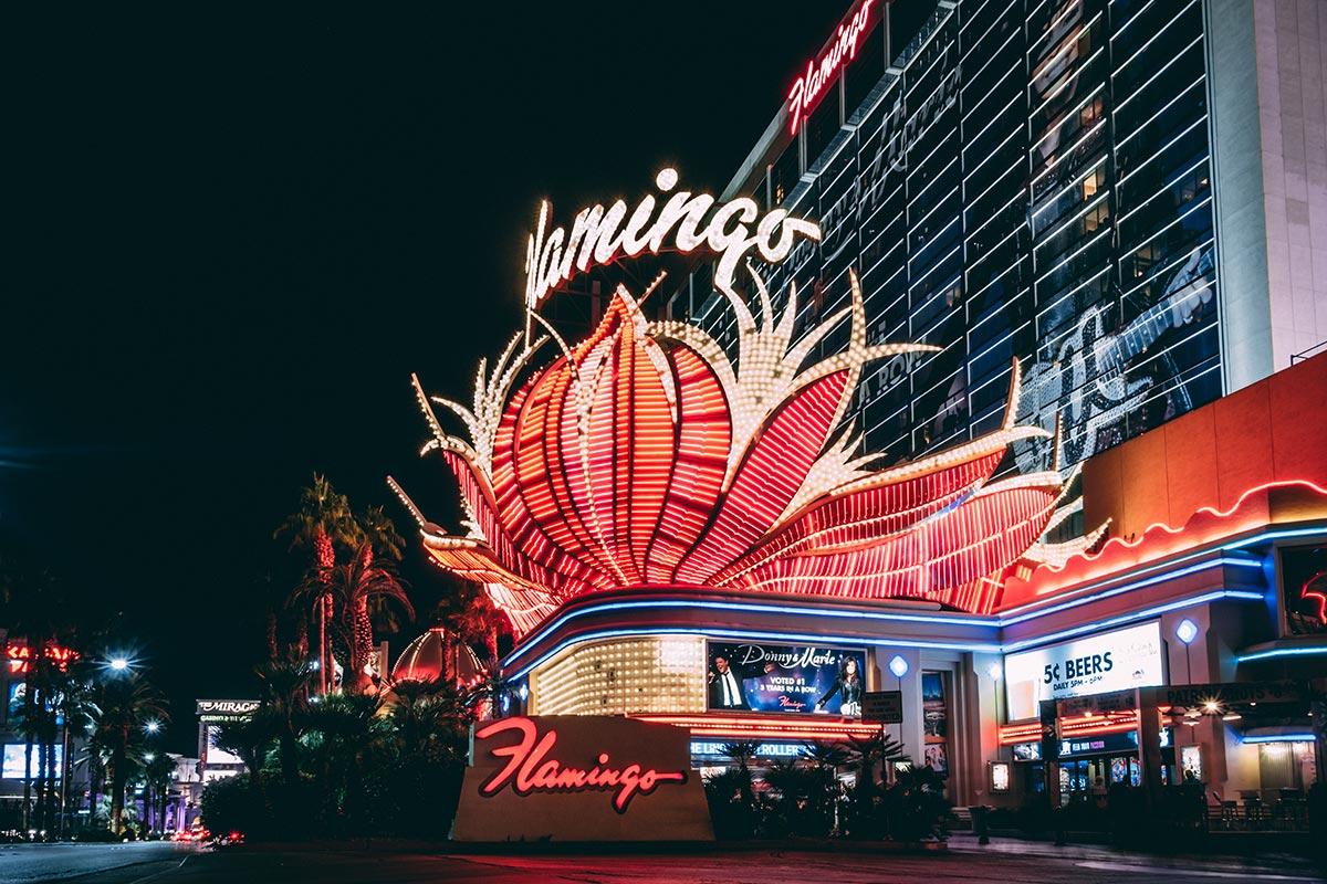 Refuse to hibernate Las Vegas hôtel Flamingo de nuit lumière