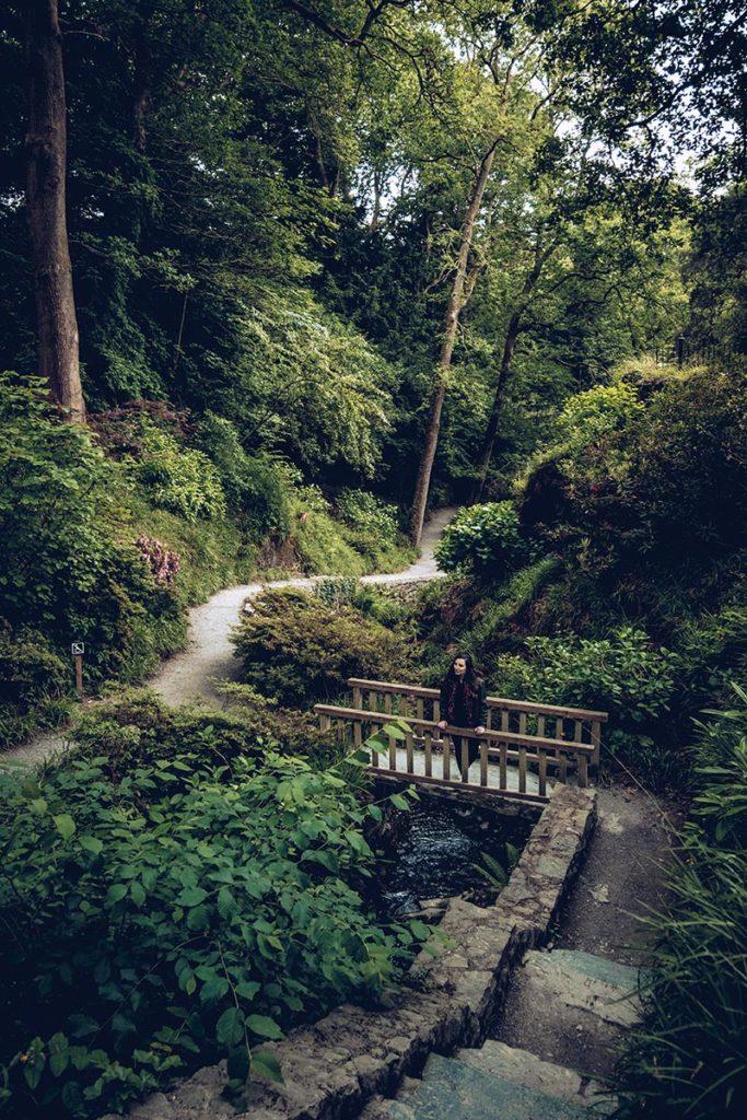 Refuse to hibernate Pays de Galles bodnant gardens pont audrey
