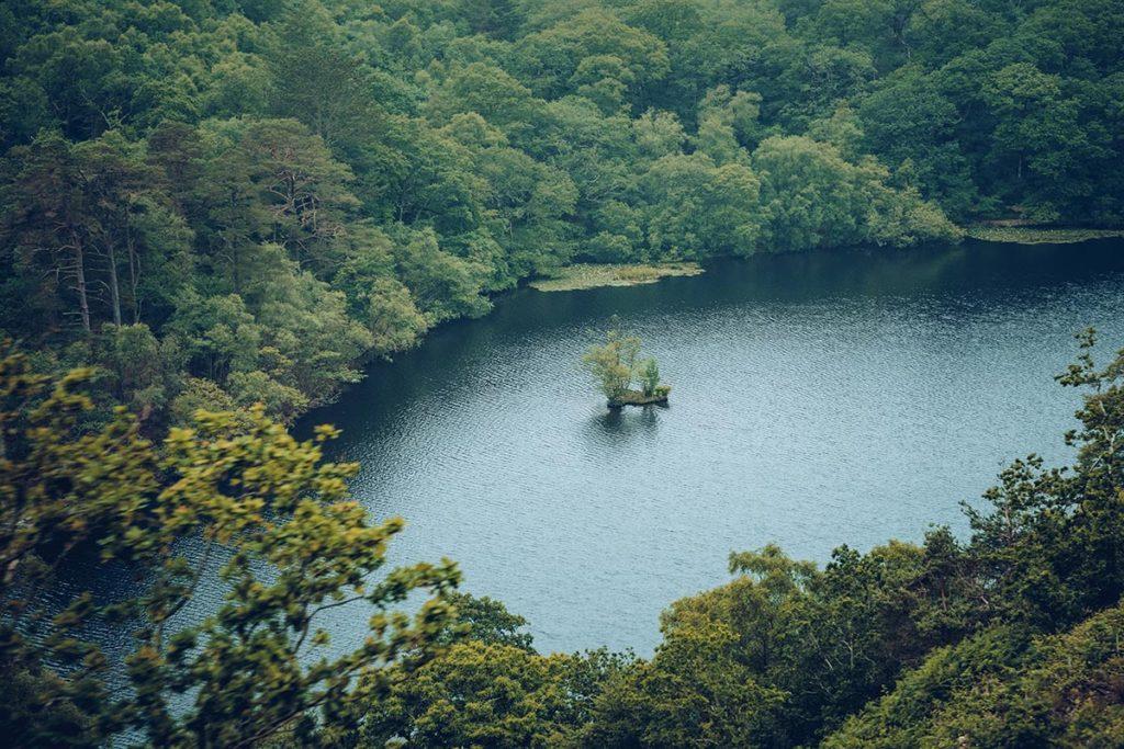 Refuse to hibernate Pays de Galles étang