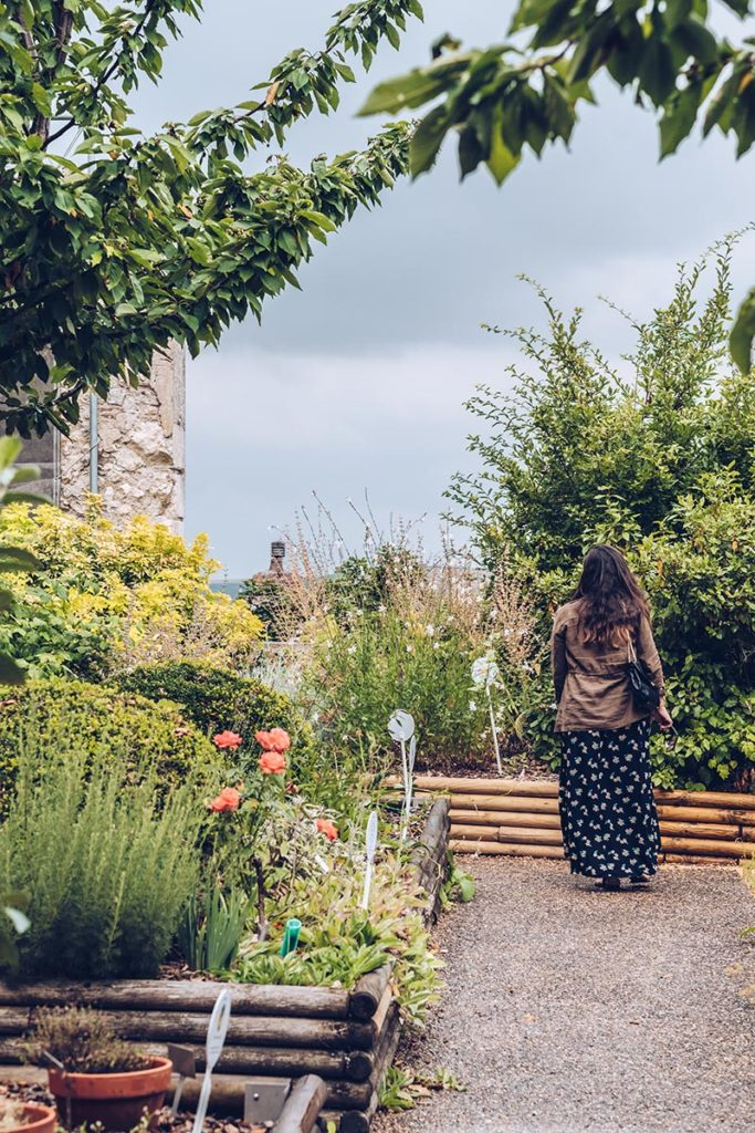 Refuse to hibernate Sancerre la Maison des Sancerre Audrey jardin